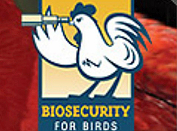 Bio Security Questions for Birds